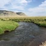 Cochetopa Creek