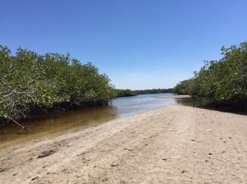 New Sandbar Courtesy Of Irma